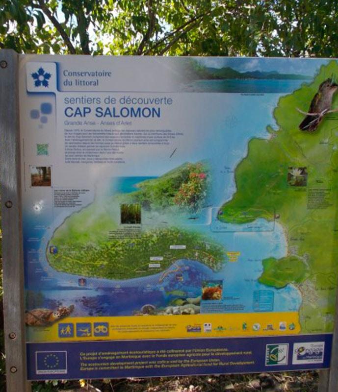 Cape Solomon hike
