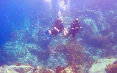 Faire de la plongée à la Pointe Lézarde